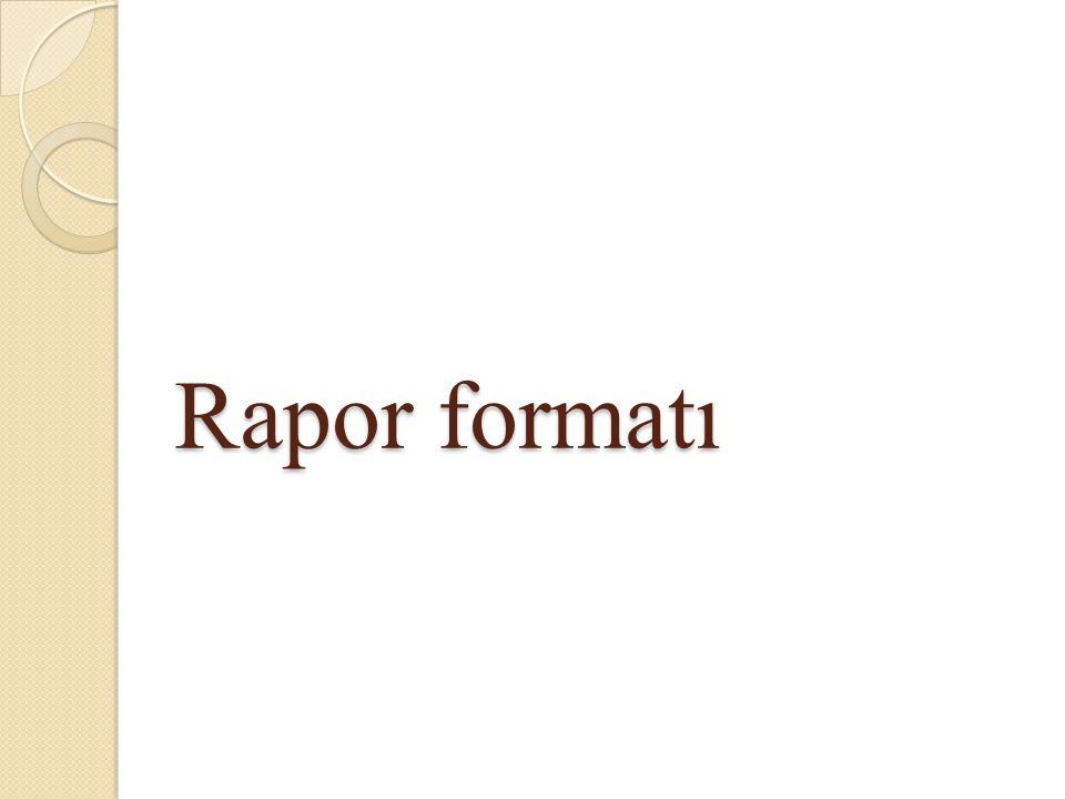 Rapor formatı