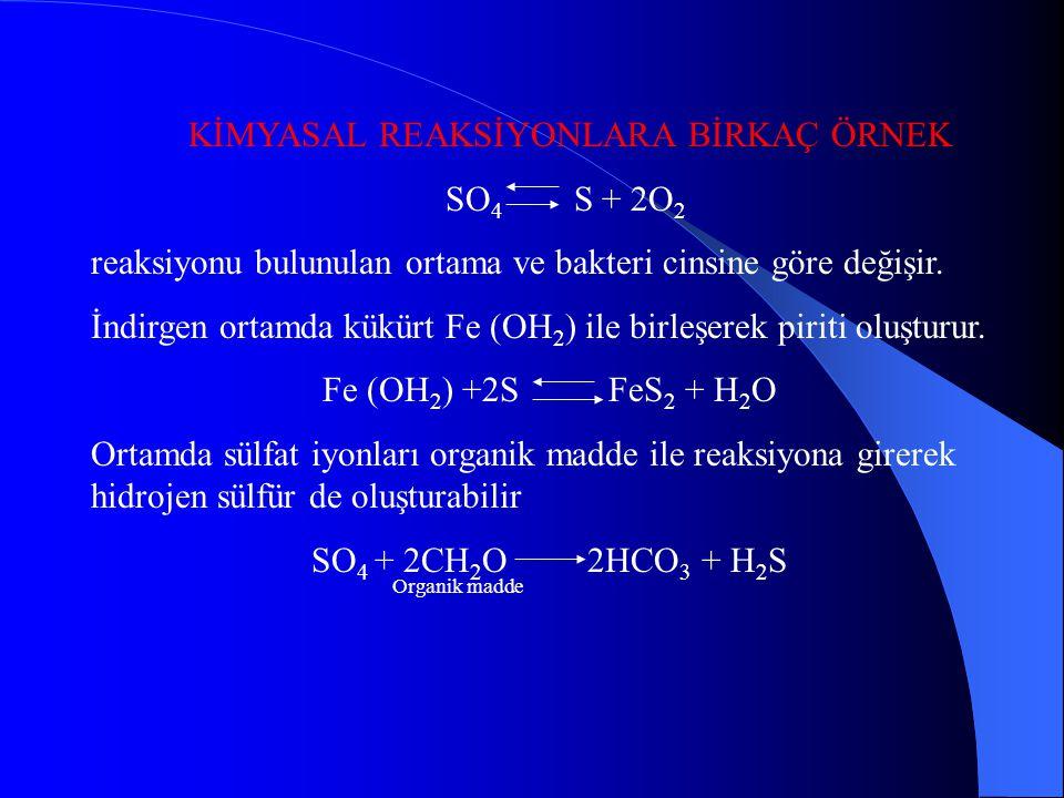 ORGANİK MADDENİN DİYAJENEZİ Su altı bir çökelme ortamında, havza tabanındaki çökel-su sınırında pH ve Eh koşulları organik madde diyajenezi açısından