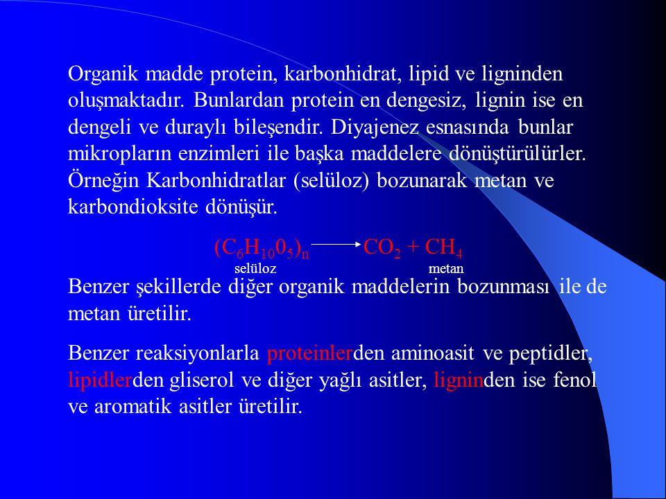 Diyajenez esnasında gelişen biyolojik bozunmanın ilk evresi oksidasyondur. Oksidasyon sonucu su, karbondioksit, nitrat ve fosfat oluşur. Basitleştiril
