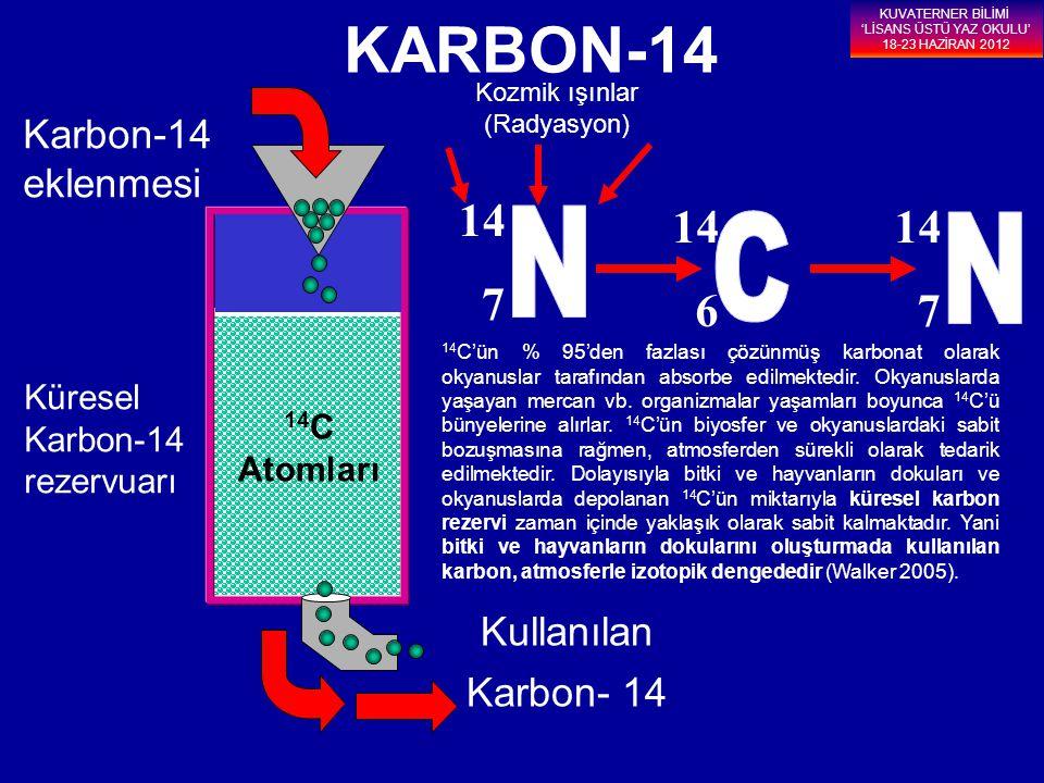 14 C Atomları KARBON-14 Karbon-14 eklenmesi Kullanılan Karbon- 14 14 7 14 6 14 7 Kozmik ışınlar (Radyasyon) Küresel Karbon-14 rezervuarı KUVATERNER Bİ