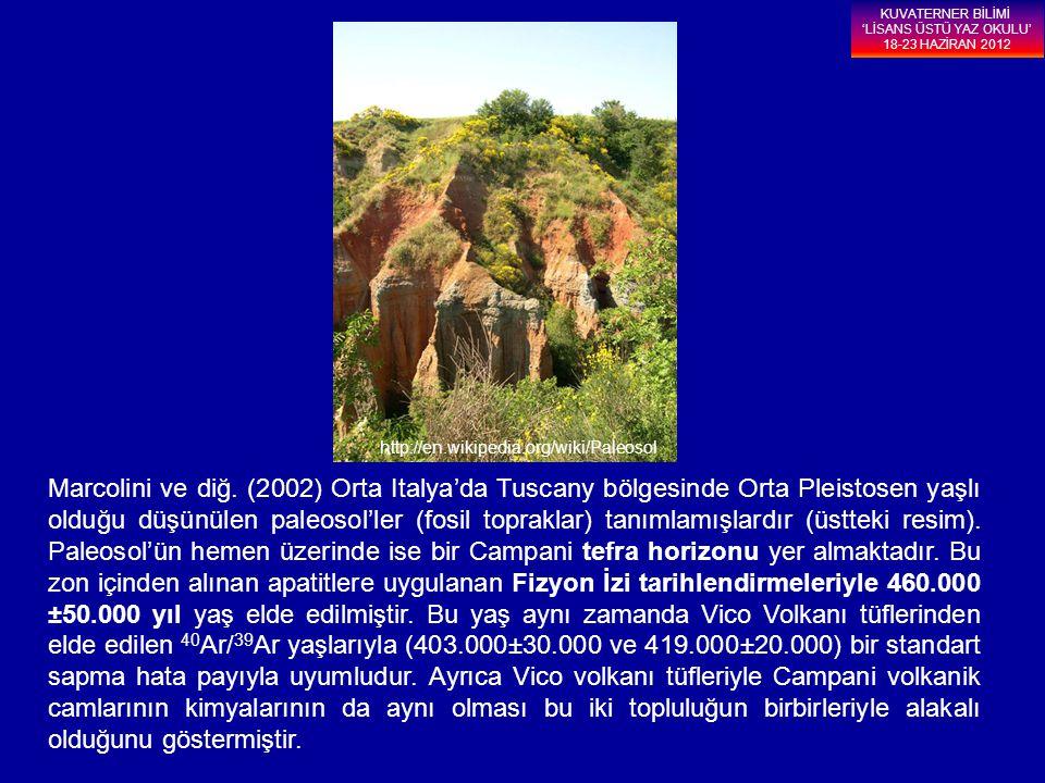Marcolini ve diğ. (2002) Orta Italya'da Tuscany bölgesinde Orta Pleistosen yaşlı olduğu düşünülen paleosol'ler (fosil topraklar) tanımlamışlardır (üst