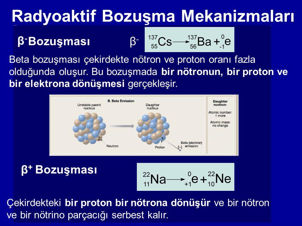 Bozuşması β-β- Beta bozuşması çekirdekte nötron ve proton oranı fazla olduğunda oluşur. Bu bozuşmada bir nötronun, bir proton ve bir elektrona dönüşme