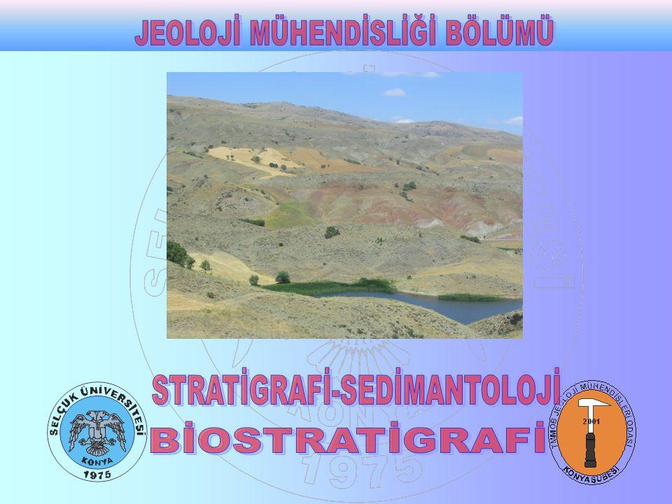 Kaya birimlerinin özelliklerinin ve korelasyonunun o kayacın fosil içeriğine göre yapılmasına biyostratigrafi denir Biyostratigrafi canlıların zaman içerisinde değişimlere uğradıkları gözlemine dayanır.