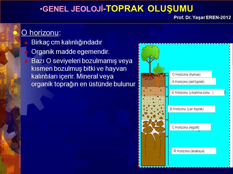 GENEL JEOLOJİ -TOPRAK OLUŞUMUGENEL JEOLOJİ -TOPRAK OLUŞUMU Prof. Dr. Yaşar EREN-2012  O horizonu:  Birkaç cm kalınlığındadır  Organik madde egemend