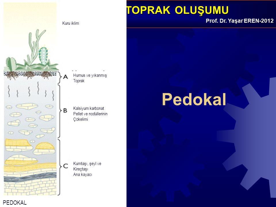 GENEL JEOLOJİ -TOPRAK OLUŞUMUGENEL JEOLOJİ -TOPRAK OLUŞUMU Prof. Dr. Yaşar EREN-2012 Pedokal Kuru iklim PEDOKAL Humus ve yıkanmış Toprak Kalsiyum karb