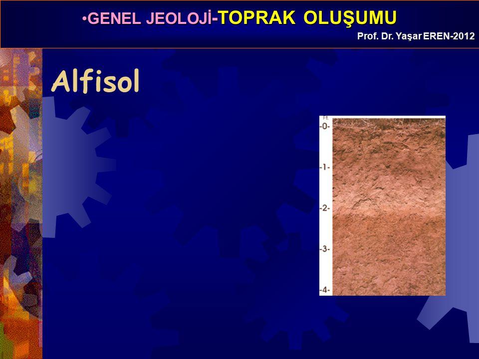 GENEL JEOLOJİ -TOPRAK OLUŞUMUGENEL JEOLOJİ -TOPRAK OLUŞUMU Prof. Dr. Yaşar EREN-2012 Alfisol