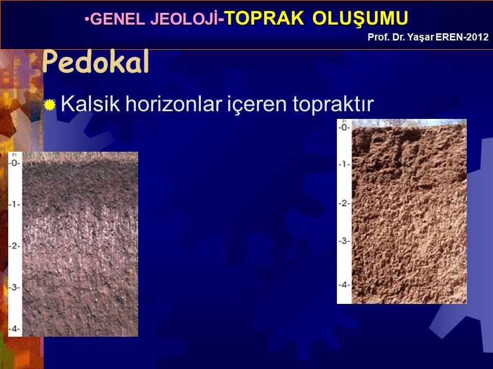 GENEL JEOLOJİ -TOPRAK OLUŞUMUGENEL JEOLOJİ -TOPRAK OLUŞUMU Prof. Dr. Yaşar EREN-2012 Pedokal  Kalsik horizonlar içeren topraktır