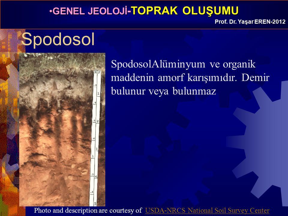 GENEL JEOLOJİ -TOPRAK OLUŞUMUGENEL JEOLOJİ -TOPRAK OLUŞUMU Prof. Dr. Yaşar EREN-2012 Spodosol SpodosolAlüminyum ve organik maddenin amorf karışımıdır.
