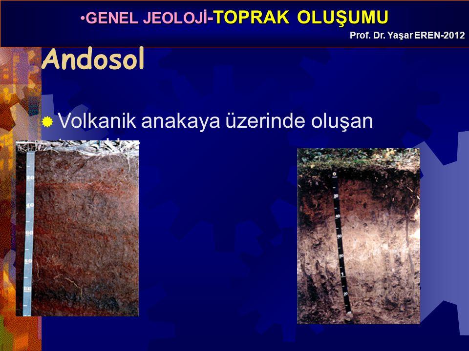 GENEL JEOLOJİ -TOPRAK OLUŞUMUGENEL JEOLOJİ -TOPRAK OLUŞUMU Prof. Dr. Yaşar EREN-2012 Andosol  Volkanik anakaya üzerinde oluşan topraklar