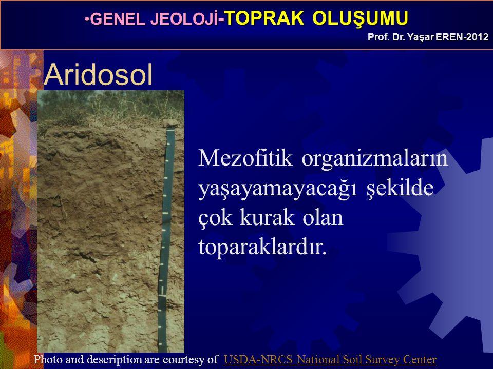 GENEL JEOLOJİ -TOPRAK OLUŞUMUGENEL JEOLOJİ -TOPRAK OLUŞUMU Prof. Dr. Yaşar EREN-2012 Aridosol Mezofitik organizmaların yaşayamayacağı şekilde çok kura