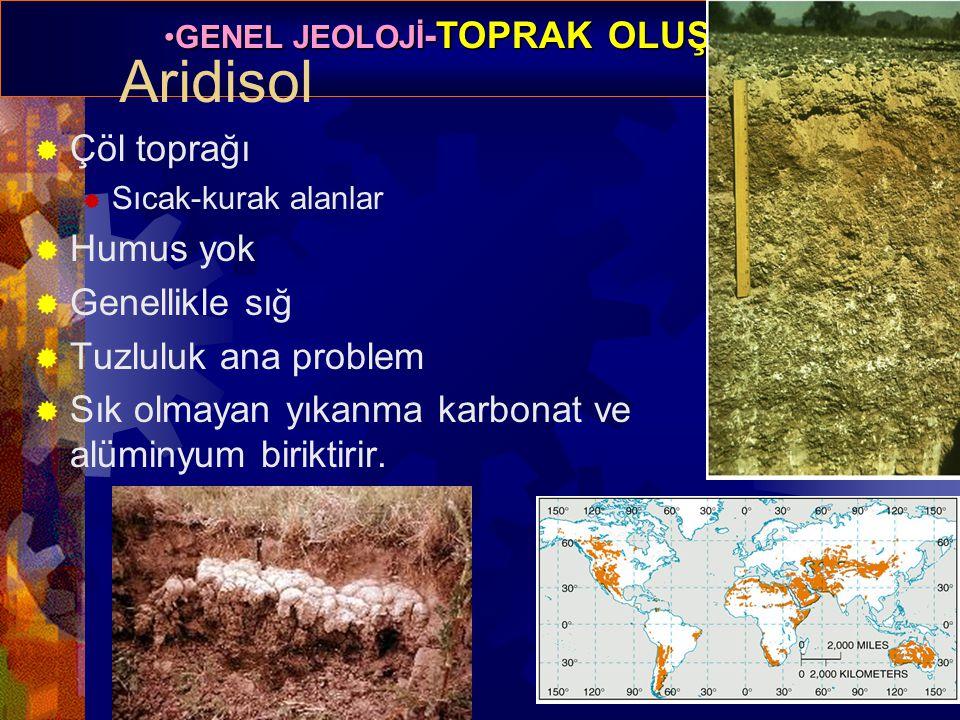 GENEL JEOLOJİ -TOPRAK OLUŞUMUGENEL JEOLOJİ -TOPRAK OLUŞUMU Prof. Dr. Yaşar EREN-2012 Aridisol  Çöl toprağı  Sıcak-kurak alanlar  Humus yok  Genell