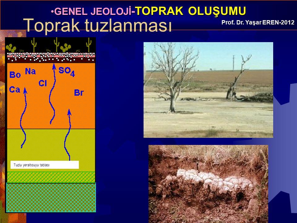 GENEL JEOLOJİ -TOPRAK OLUŞUMUGENEL JEOLOJİ -TOPRAK OLUŞUMU Prof. Dr. Yaşar EREN-2012 Toprak tuzlanması Tuzlu yeraltısuyu tablası