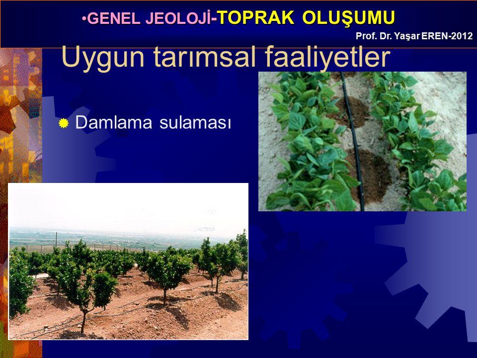 GENEL JEOLOJİ -TOPRAK OLUŞUMUGENEL JEOLOJİ -TOPRAK OLUŞUMU Prof. Dr. Yaşar EREN-2012  Damlama sulaması Uygun tarımsal faaliyetler