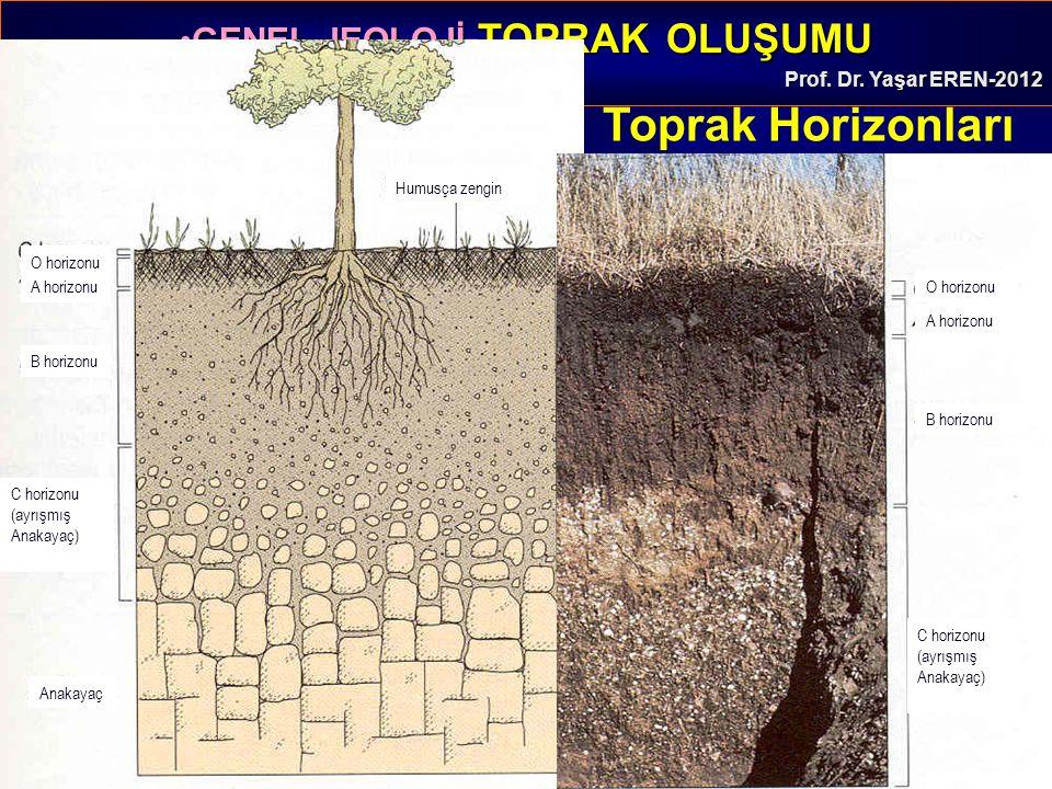 GENEL JEOLOJİ -TOPRAK OLUŞUMUGENEL JEOLOJİ -TOPRAK OLUŞUMU Prof. Dr. Yaşar EREN-2012 Ultisol