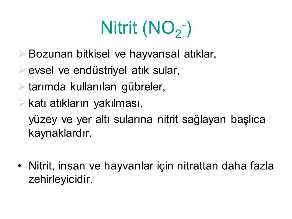 Nitrit (NO 2 - )  Bozunan bitkisel ve hayvansal atıklar,  evsel ve endüstriyel atık sular,  tarımda kullanılan gübreler,  katı atıkların yakılması