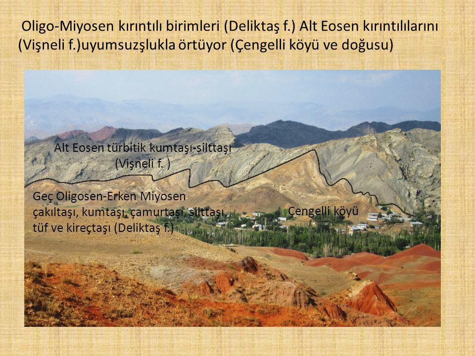Oligo-Miyosen kırıntılı birimleri (Deliktaş f.) Alt Eosen kırıntılılarını (Vişneli f.)uyumsuzşlukla örtüyor (Çengelli köyü ve doğusu) Geç Oligosen-Erk