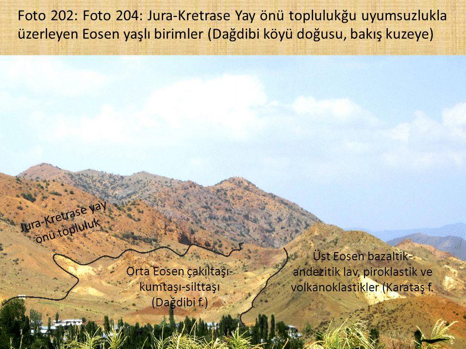 Foto 202: Foto 204: Jura-Kretrase Yay önü toplulukğu uyumsuzlukla üzerleyen Eosen yaşlı birimler (Dağdibi köyü doğusu, bakış kuzeye) Jura-Kretrase yay