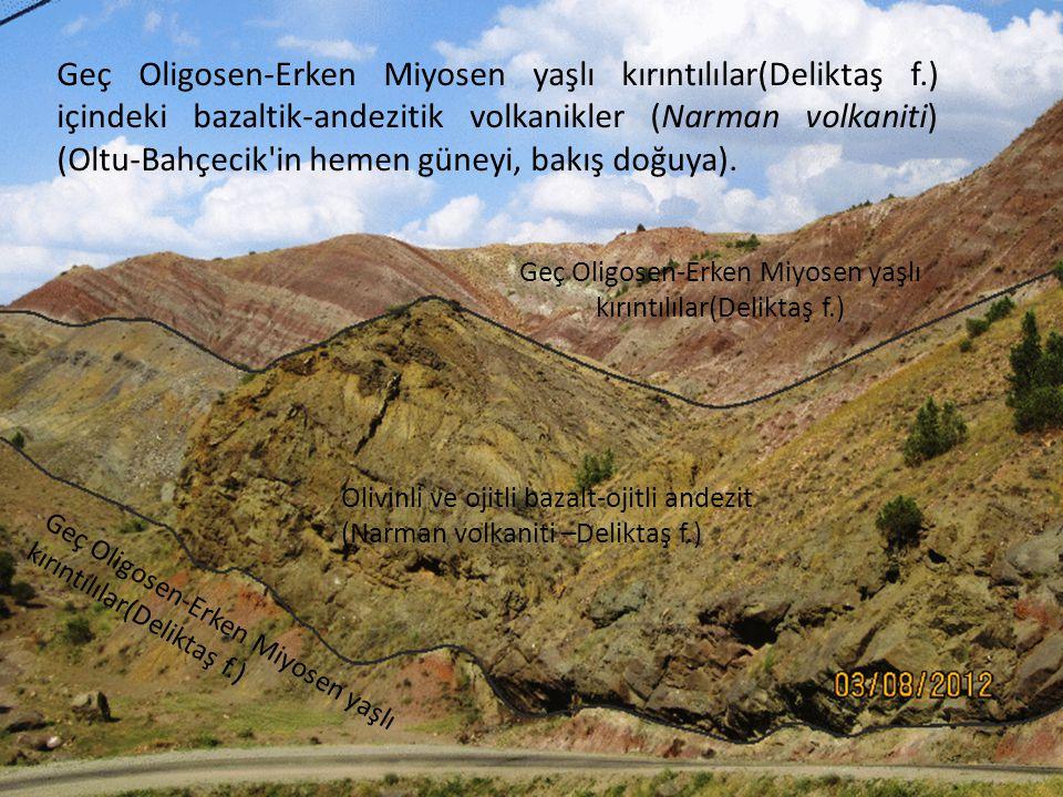 Geç Oligosen-Erken Miyosen yaşlı kırıntılılar(Deliktaş f.) içindeki bazaltik-andezitik volkanikler (Narman volkaniti) (Oltu-Bahçecik'in hemen güneyi,