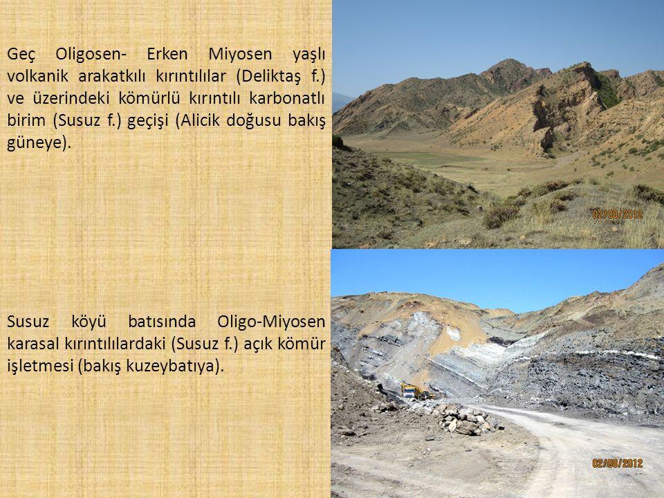 Susuz köyü batısında Oligo-Miyosen karasal kırıntılılardaki (Susuz f.) açık kömür işletmesi (bakış kuzeybatıya). Geç Oligosen- Erken Miyosen yaşlı vol