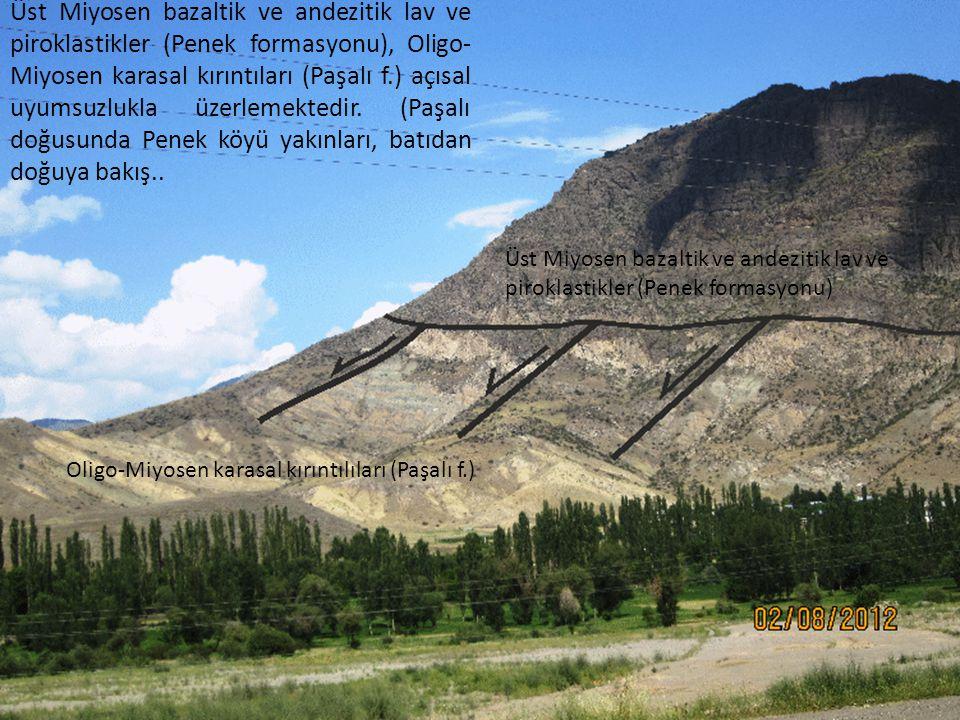 Üst Miyosen bazaltik ve andezitik lav ve piroklastikler (Penek formasyonu), Oligo- Miyosen karasal kırıntıları (Paşalı f.) açısal uyumsuzlukla üzerlem