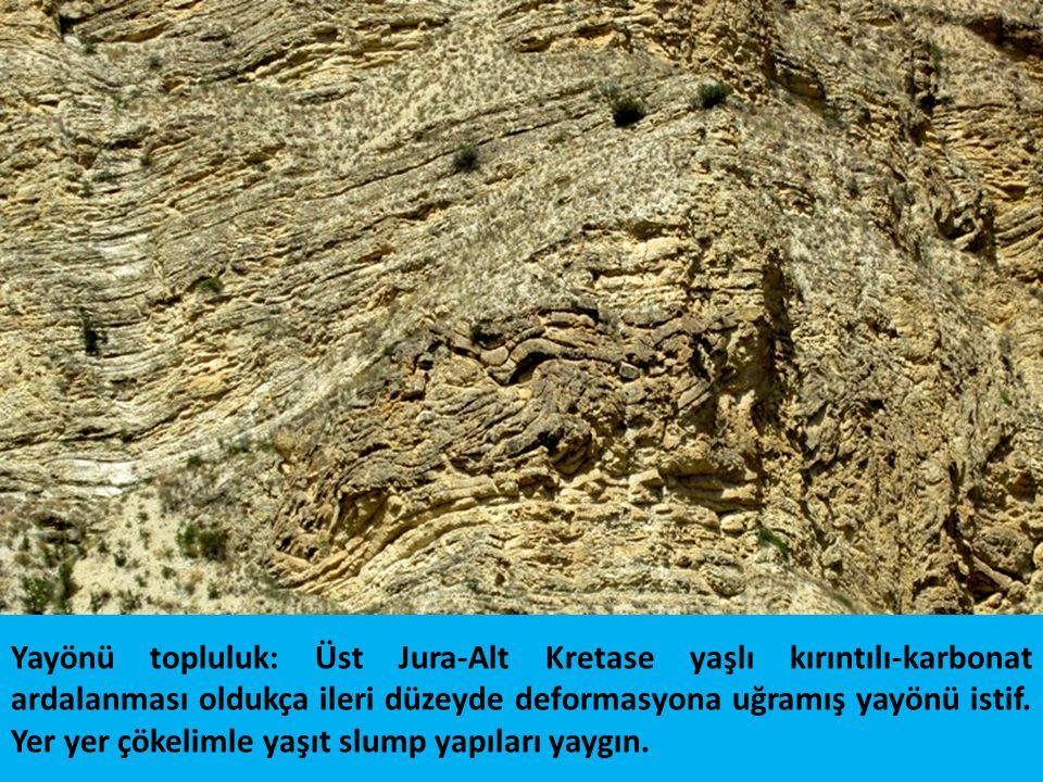 Yayönü topluluk: Üst Jura-Alt Kretase yaşlı kırıntılı-karbonat ardalanması oldukça ileri düzeyde deformasyona uğramış yayönü istif. Yer yer çökelimle