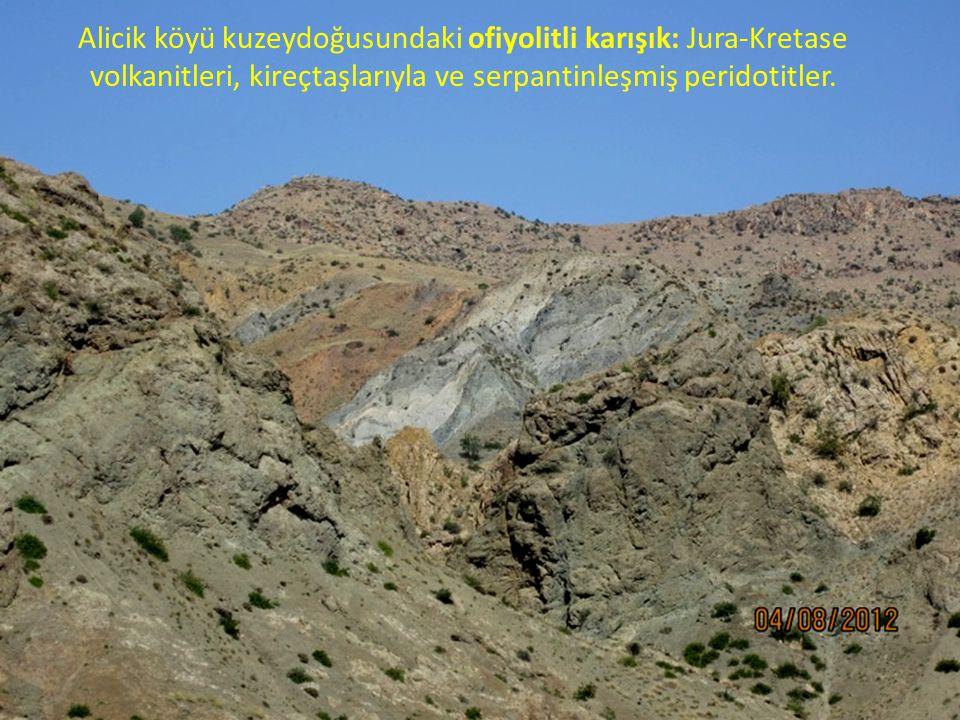 Alicik köyü kuzeydoğusundaki ofiyolitli karışık: Jura-Kretase volkanitleri, kireçtaşlarıyla ve serpantinleşmiş peridotitler.