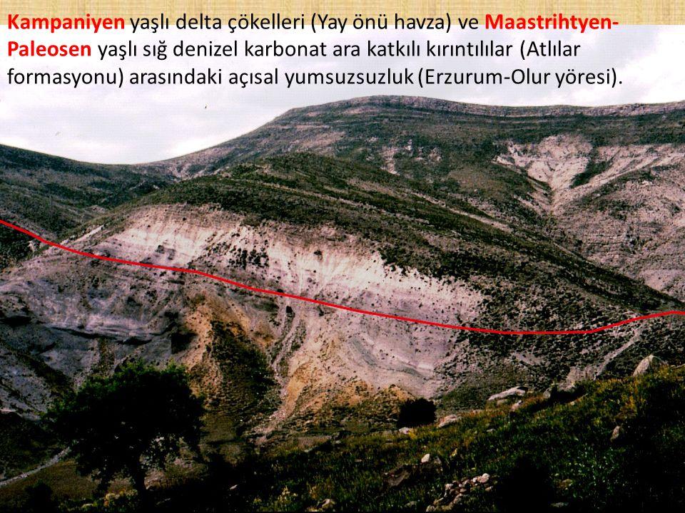 Kampaniyen yaşlı delta çökelleri (Yay önü havza) ve Maastrihtyen- Paleosen yaşlı sığ denizel karbonat ara katkılı kırıntılılar (Atlılar formasyonu) ar