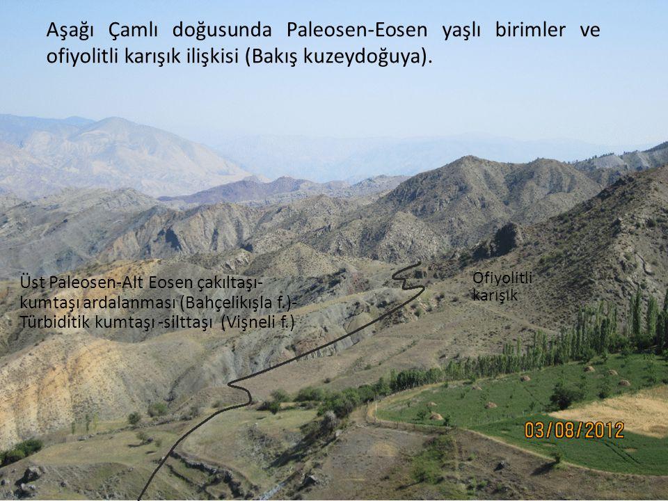 Aşağı Çamlı doğusunda Paleosen-Eosen yaşlı birimler ve ofiyolitli karışık ilişkisi (Bakış kuzeydoğuya). Ofiyolitli karışık Üst Paleosen-Alt Eosen çakı