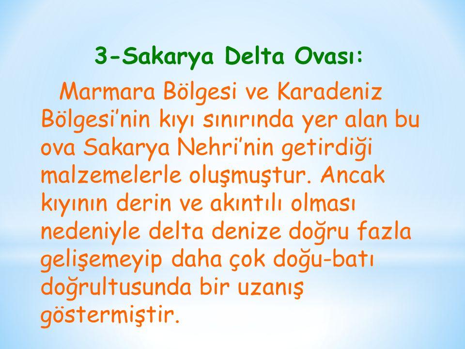 3-Sakarya Delta Ovası: Marmara Bölgesi ve Karadeniz Bölgesi'nin kıyı sınırında yer alan bu ova Sakarya Nehri'nin getirdiği malzemelerle oluşmuştur. An