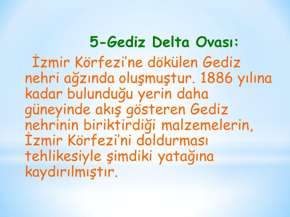 5-Gediz Delta Ovası: İzmir Körfezi'ne dökülen Gediz nehri ağzında oluşmuştur. 1886 yılına kadar bulunduğu yerin daha güneyinde akış gösteren Gediz neh