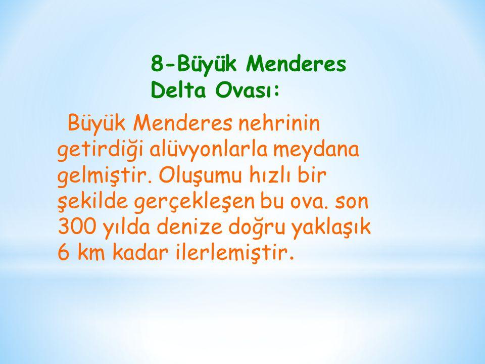 8-Büyük Menderes Delta Ovası: Büyük Menderes nehrinin getirdiği alüvyonlarla meydana gelmiştir. Oluşumu hızlı bir şekilde gerçekleşen bu ova. son 300