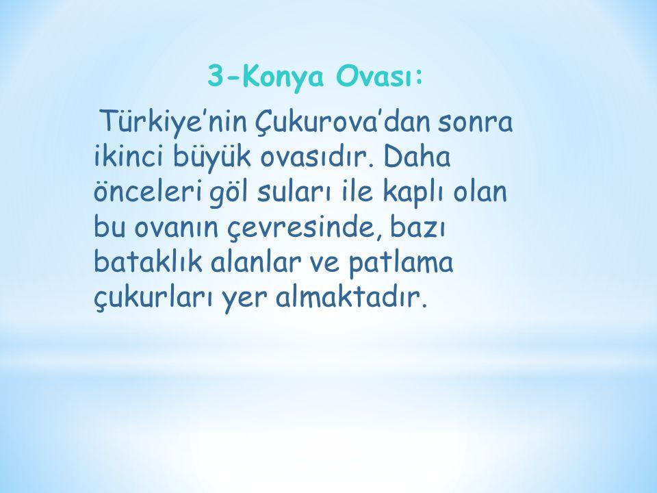 3-Konya Ovası: Türkiye'nin Çukurova'dan sonra ikinci büyük ovasıdır. Daha önceleri göl suları ile kaplı olan bu ovanın çevresinde, bazı bataklık alanl