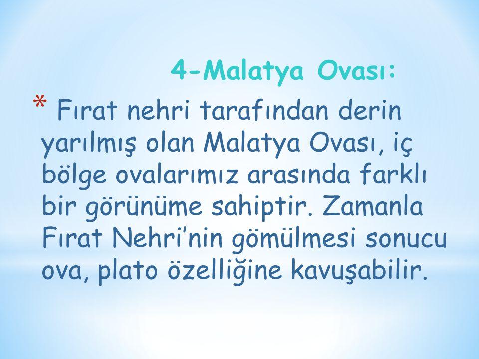 4-Malatya Ovası: * Fırat nehri tarafından derin yarılmış olan Malatya Ovası, iç bölge ovalarımız arasında farklı bir görünüme sahiptir. Zamanla Fırat