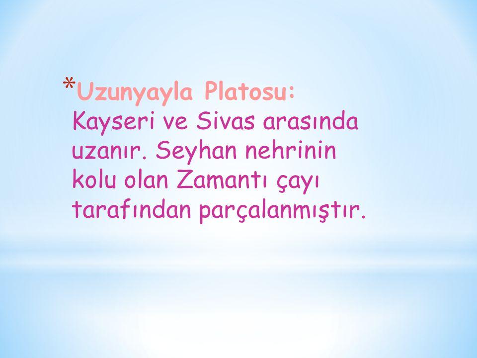 * Uzunyayla Platosu: Kayseri ve Sivas arasında uzanır. Seyhan nehrinin kolu olan Zamantı çayı tarafından parçalanmıştır.