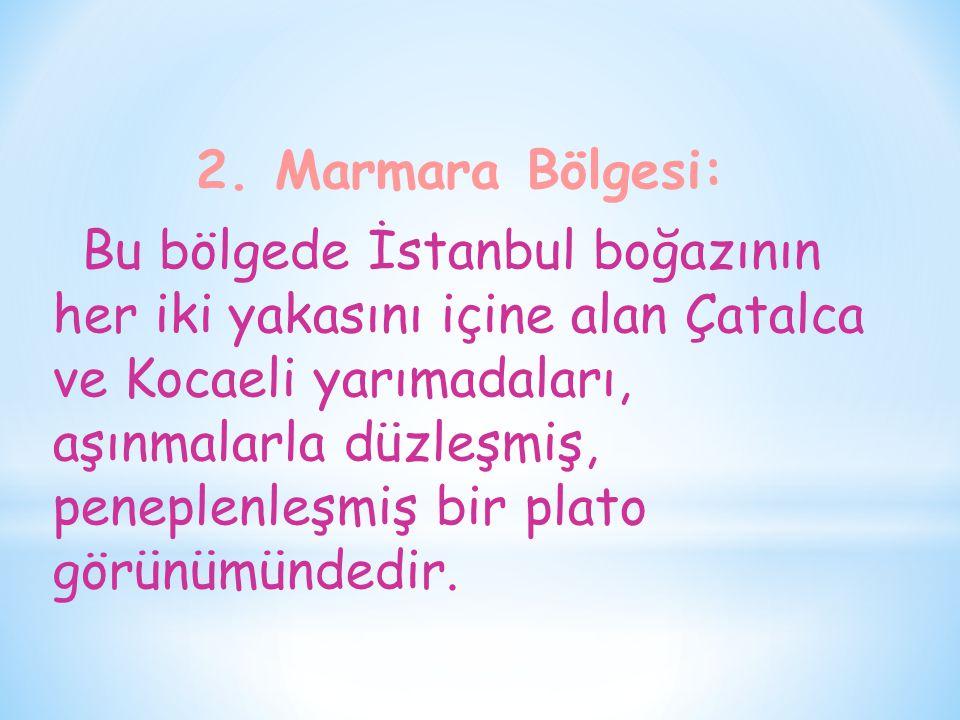 2. Marmara Bölgesi: Bu bölgede İstanbul boğazının her iki yakasını içine alan Çatalca ve Kocaeli yarımadaları, aşınmalarla düzleşmiş, peneplenleşmiş b