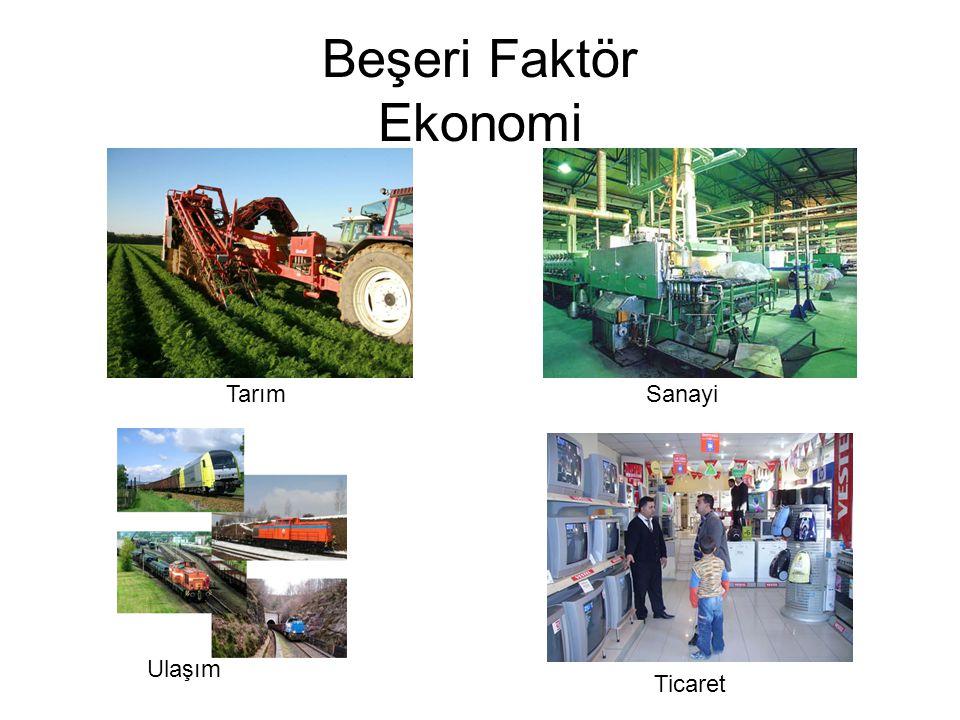 Beşeri Faktör Ekonomi TarımSanayi Ulaşım Ticaret