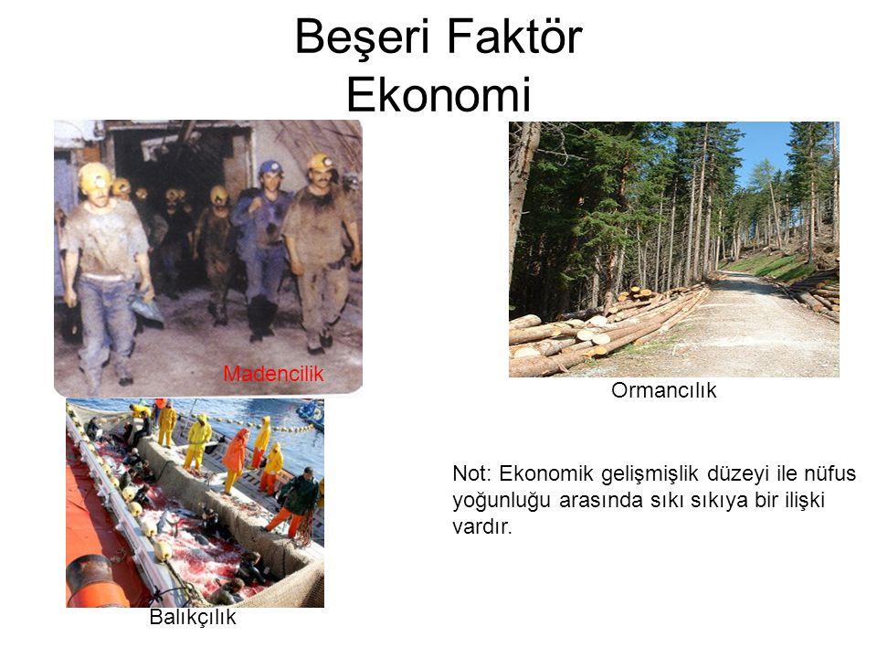 Beşeri Faktör Ekonomi Madencilik Balıkçılık Ormancılık Not: Ekonomik gelişmişlik düzeyi ile nüfus yoğunluğu arasında sıkı sıkıya bir ilişki vardır.