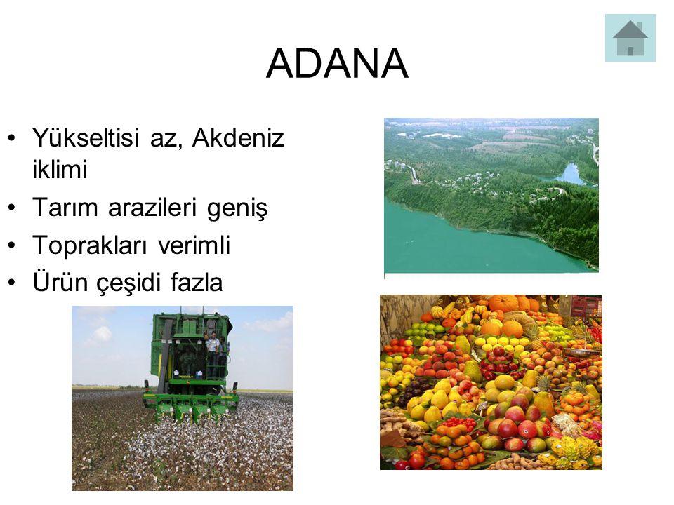 ADANA Yükseltisi az, Akdeniz iklimi Tarım arazileri geniş Toprakları verimli Ürün çeşidi fazla