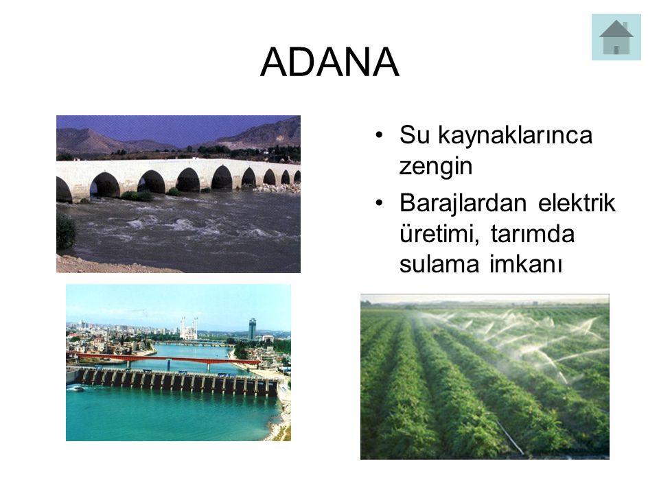 ADANA Su kaynaklarınca zengin Barajlardan elektrik üretimi, tarımda sulama imkanı