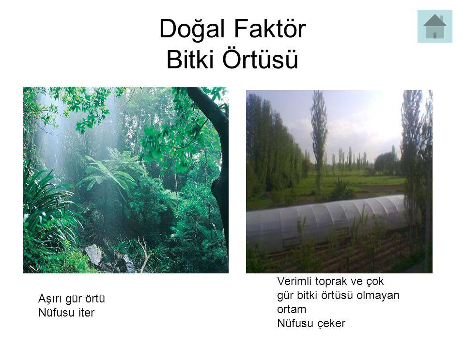 Doğal Faktör Bitki Örtüsü Aşırı gür örtü Nüfusu iter Verimli toprak ve çok gür bitki örtüsü olmayan ortam Nüfusu çeker