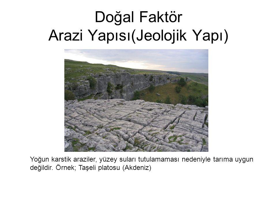 Doğal Faktör Arazi Yapısı(Jeolojik Yapı) Yoğun karstik araziler, yüzey suları tutulamaması nedeniyle tarıma uygun değildir.