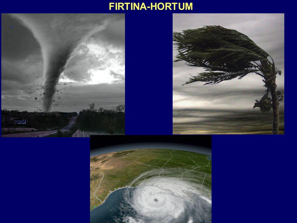 FIRTINA-HORTUM