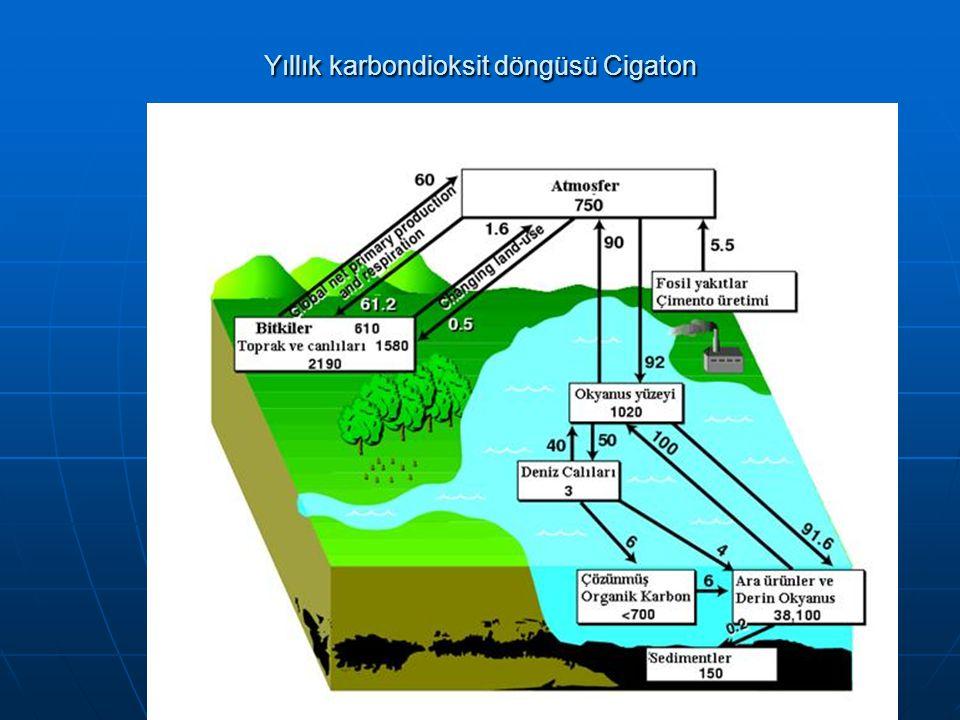 Yıllık karbondioksit döngüsü Cigaton