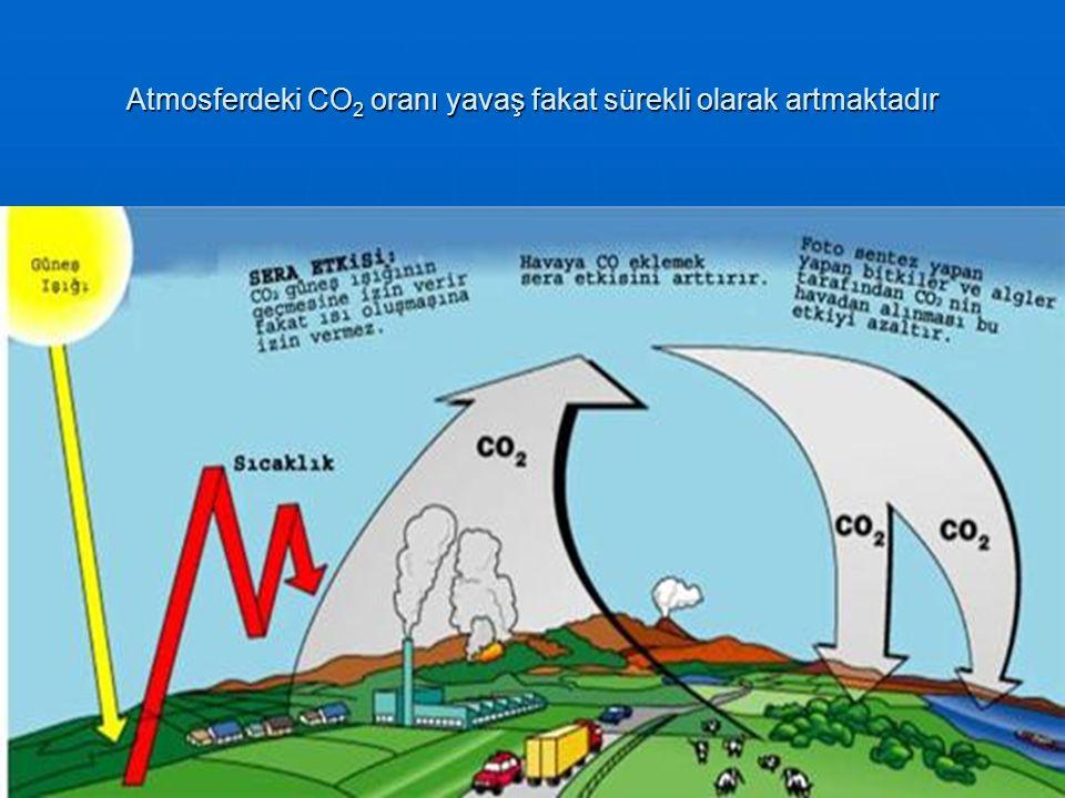 Atmosferdeki CO 2 oranı yavaş fakat sürekli olarak artmaktadır