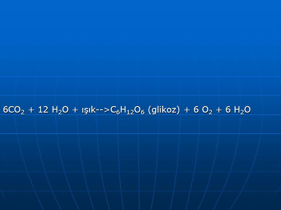 6CO 2 + 12 H 2 O + ışık-->C 6 H 12 O 6 (glikoz) + 6 O 2 + 6 H 2 O