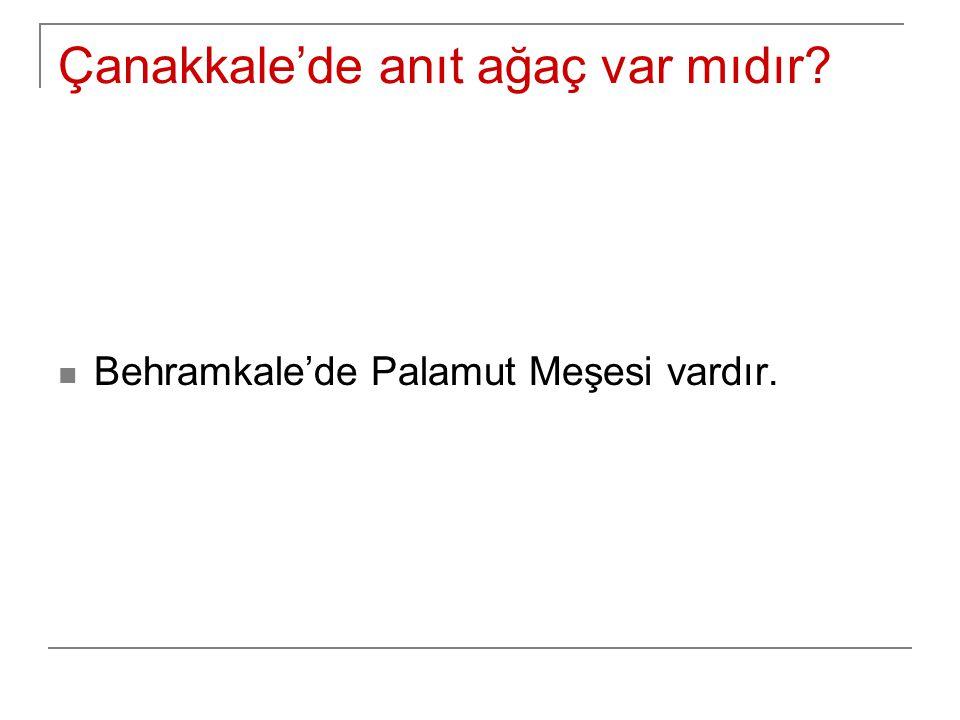 Çanakkale'de anıt ağaç var mıdır? Behramkale'de Palamut Meşesi vardır.