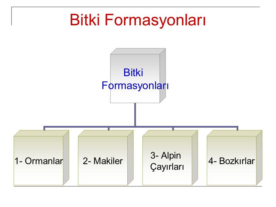 Bitki Formasyonları Bitki Formasyonları 1- Ormanlar2- Makiler 3- Alpin Çayırları 4- Bozkırlar