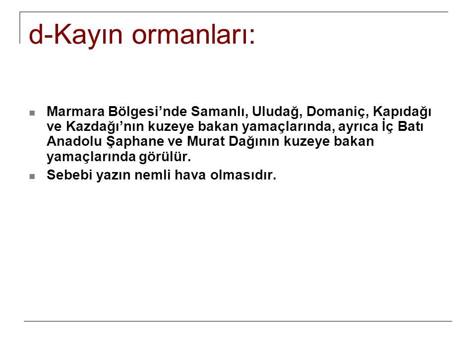 d-Kayın ormanları: Marmara Bölgesi'nde Samanlı, Uludağ, Domaniç, Kapıdağı ve Kazdağı'nın kuzeye bakan yamaçlarında, ayrıca İç Batı Anadolu Şaphane ve