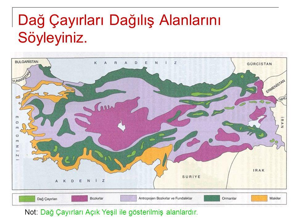 Dağ Çayırları Dağılış Alanlarını Söyleyiniz. Not: Dağ Çayırları Açık Yeşil ile gösterilmiş alanlardır.