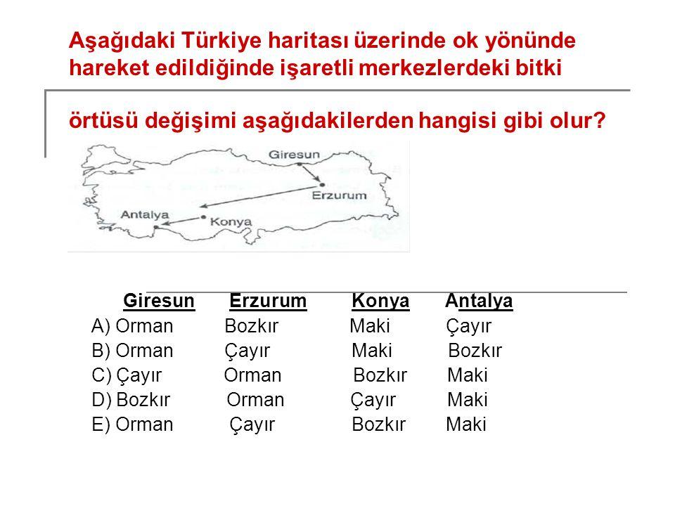 Aşağıdaki Türkiye haritası üzerinde ok yönünde hareket edildiğinde işaretli merkezlerdeki bitki örtüsü değişimi aşağıdakilerden hangisi gibi olur? Gir